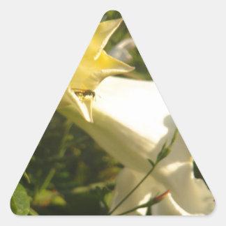 Flor de la vid de trompeta con una avispa pegatina triangular