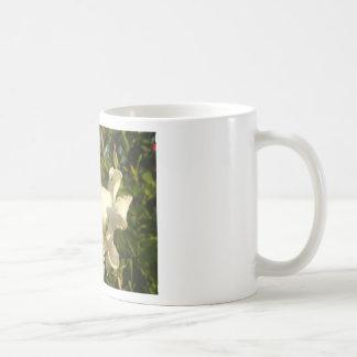 Flor de la vid de trompeta con una avispa taza