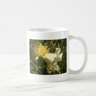 Flor de la vid de trompeta con una avispa taza clásica