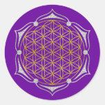 Flor de la vida - plata del oro de Lotus