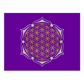 Flor de la vida - plata del oro de Lotus Tarjetas Postales