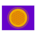 Flor de la vida - soleado amarillo postal