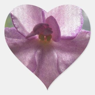 Flor de la violeta africana de la lavanda pegatina en forma de corazón