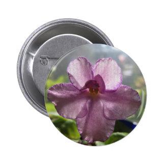 Flor de la violeta africana de la lavanda pins