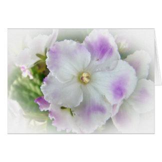 Flor de la violeta africana tarjeta de felicitación