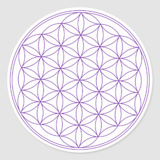 Flor de la violeta de la vida pegatina redonda