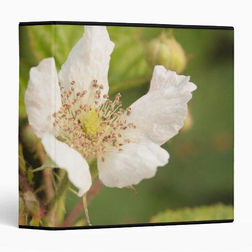 """flor de la zarzamora carpeta 1 1/2"""""""