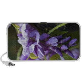 Flor de las glicinias mini altavoz