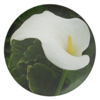 Flor de Lilly de la cala Platos