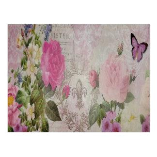 Flor de lis hermosa de la mariposa de los rosas postal