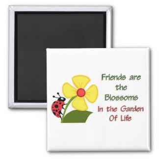 Flor de los amigos imán de frigorífico