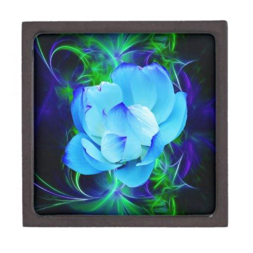 Flor de loto azul y su significado cajas de regalo de calidad