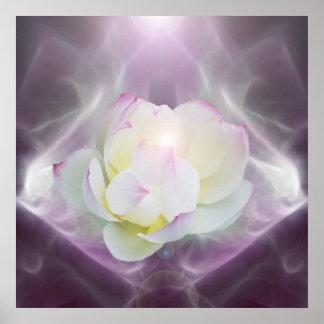 Flor de loto blanco en cristal póster