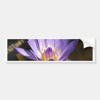 flor de loto etiqueta de parachoque