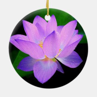 Flor de loto púrpura hermosa en agua adorno