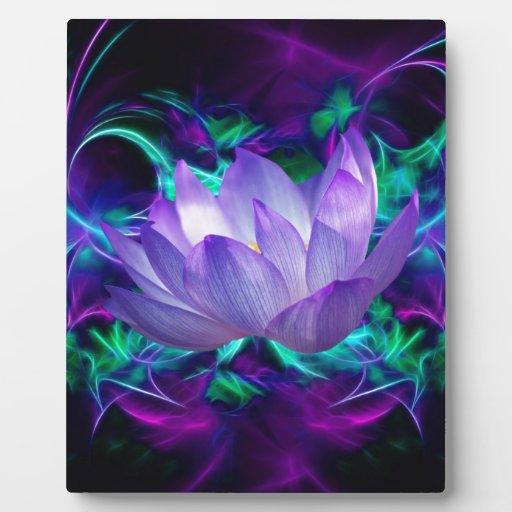 Flor de loto púrpura y su significado placa de madera