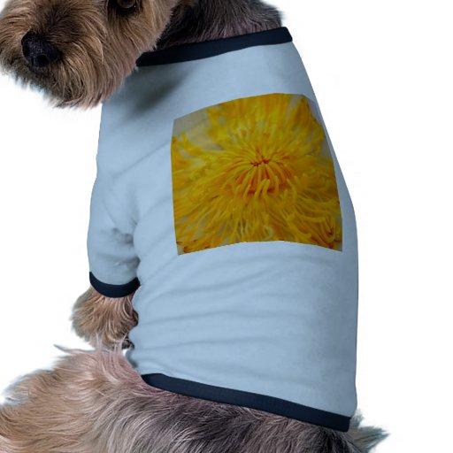 flor de loto ropa de mascota