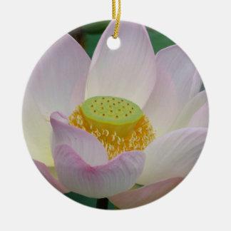 Flor de loto rosada hermosa adornos