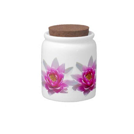 Flor de loto rosada platos para caramelos