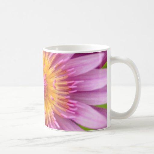 flor de loto tazas