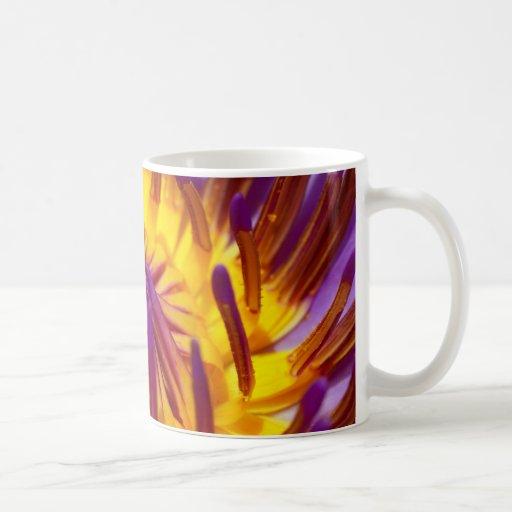 flor de loto tazas de café