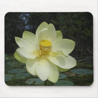 Flor de Lotus amarilla Alfombrillas De Ratón