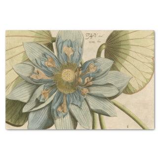 Flor de Lotus azul en fondo del moreno con la Papel De Seda