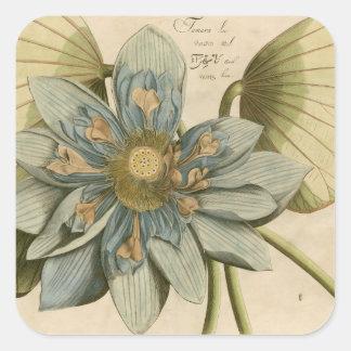 Flor de Lotus azul en fondo del moreno con la Pegatina Cuadrada