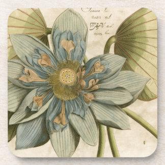 Flor de Lotus azul en fondo del moreno con la Posavasos De Bebidas