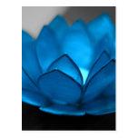 Flor de Lotus azul Tarjetas Postales