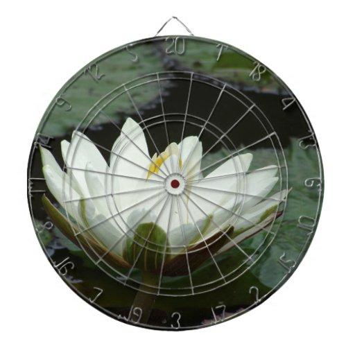 Flor de Lotus blanco