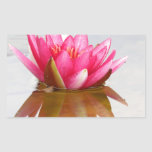 Flor de Lotus del amor Rectangular Pegatinas