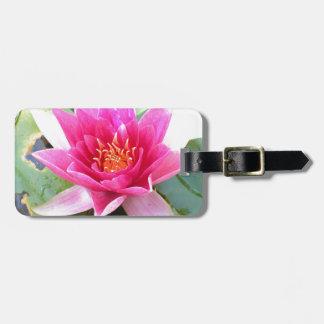 Flor de Lotus del lirio de agua
