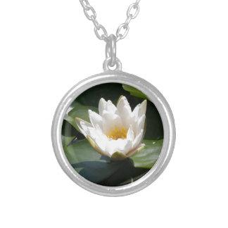 Flor de Lotus del lirio de agua blanca Joyerias Personalizadas
