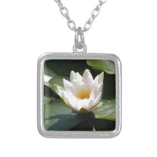 Flor de Lotus del lirio de agua blanca Joyeria Personalizada