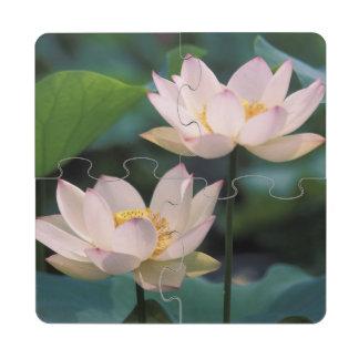 Flor de Lotus en el flor, China Posavasos De Puzzle