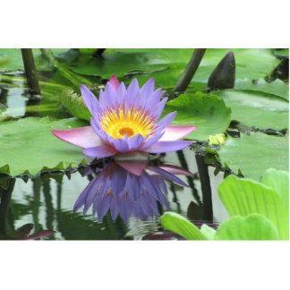 Flor de Lotus Fotoescultura Vertical