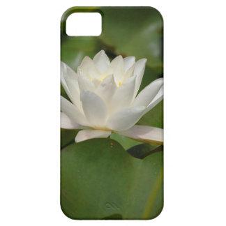 Flor de Lotus iPhone 5 Carcasas