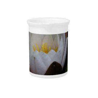 Flor de Lotus Jarrones
