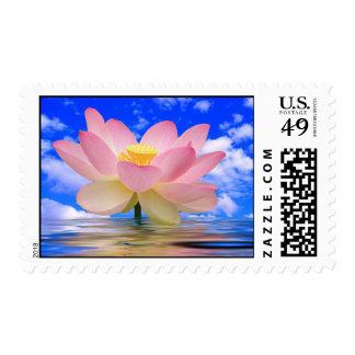 Flor de Lotus llevada en agua