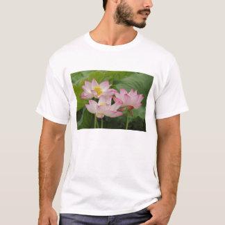Flor de Lotus, nucifera del Nelumbo, China 2 Playera