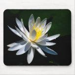 Flor de Lotus o waterlily y significado Tapetes De Ratón