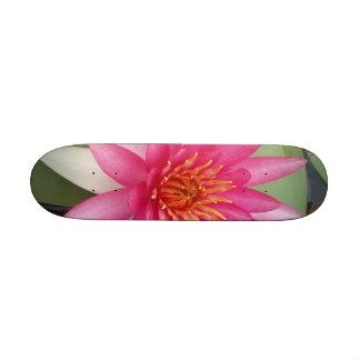Flor de Lotus Patines