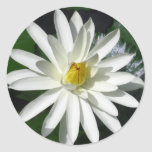 Flor de Lotus Pegatinas Redondas