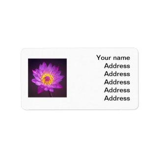 Flor de Lotus púrpura Etiquetas De Dirección