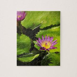 Flor de Lotus - rompecabezas