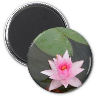 Flor de Lotus rosada Imán Redondo 5 Cm
