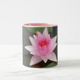 Flor de Lotus rosada Taza De Dos Tonos
