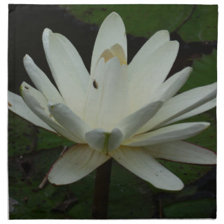 Flor de Lotus Servilleta