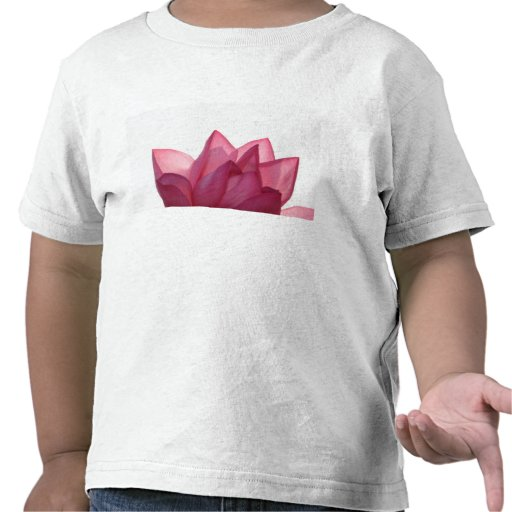 Flor de Lotus [speciosum de Nelumbio] por Camiseta